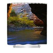 Landscape 319 Shower Curtain