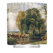 Landscape Cattle In A Stream With Sluice Gate Shower Curtain