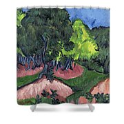 Landscape With Chestnut Tree Shower Curtain