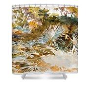Landscape With Palmettos Shower Curtain