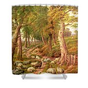 Landscape With Sheep Shower Curtain