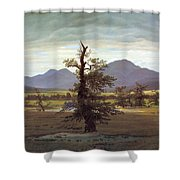 Landscape With Solitary Tree Shower Curtain