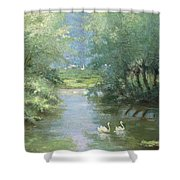 Landscape With Swans Shower Curtain