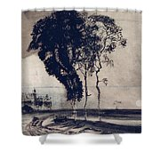 Landscape With Three Trees Shower Curtain