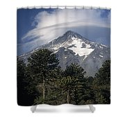 Lanin Volcano And Araucaria Trees Shower Curtain
