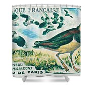 Lapwings Study Of Migration Museum Of Paris Shower Curtain
