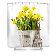 Large Bucket Of Daffodils Shower Curtain