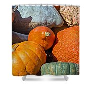 Large Edible Gourds Shower Curtain