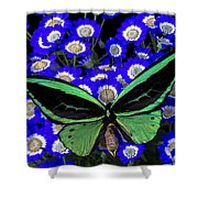 Large Green Butterfly Shower Curtain
