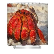 Large Hermit Crab On The Beach Shower Curtain