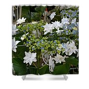 Shooting Star Bouquet Shower Curtain