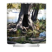 Large Tree Trunk Shower Curtain