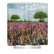 Larkspur Fields Forever Shower Curtain