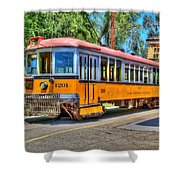 Lary 1201 3 Shower Curtain