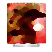 Las Tunas  Shower Curtain