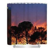 Las Vegas Trump Tower Sunset Shower Curtain