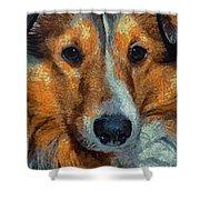 Lassie - Rough Collie Shower Curtain