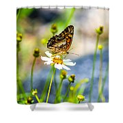 Last Bloomin Flower  Shower Curtain