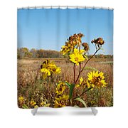Last Blooms Before Fall Shower Curtain