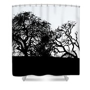 Final Journey Shower Curtain