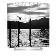 Last Flight Of The Day Shower Curtain