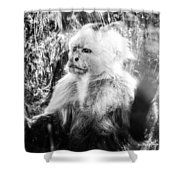 Last Hope Of Freedom Shower Curtain