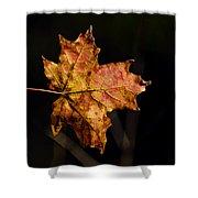 Last Maple Leaf Shower Curtain