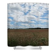 Last Of The Poppies Shower Curtain