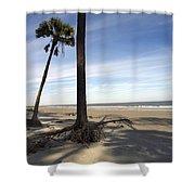 Last Pine Standing Shower Curtain