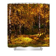 Last Song Of The Autumn 1 Shower Curtain