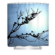 Lasy Birds Shower Curtain