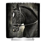 Latcho's Shadow  Shower Curtain