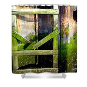 Late Afternoon Beauty Shower Curtain