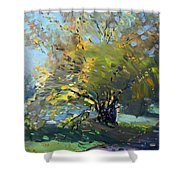 Late Afternoon By The River Shower Curtain