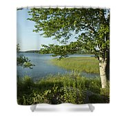 Late Afternoon On Worden Pond Shower Curtain