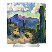 Late Afternoon Tucson Shower Curtain