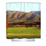 Late Autumn Afternoon In Cades Cove Shower Curtain