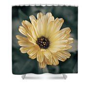 Late Bloomer Shower Curtain