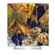 The Magic Of Autumn Shower Curtain