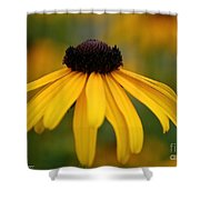 Late Summer Blooms Shower Curtain