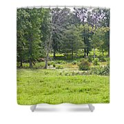 Late Summer By The Pond Shower Curtain