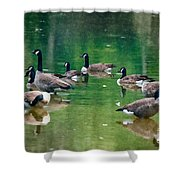 Late Summer Gathering Shower Curtain