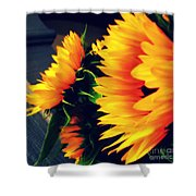 Late Summer Greetings Shower Curtain