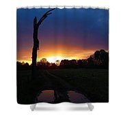 Late Sunset And Tree Shower Curtain