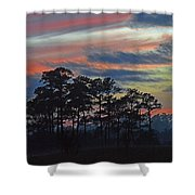 Late Sunset Trees In The Mist Shower Curtain