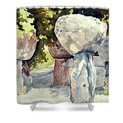 Latte Stone Shower Curtain