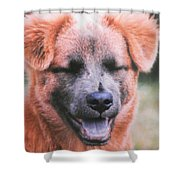 Laughing Dog Shower Curtain