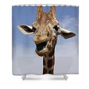 Laughing Giraffe Shower Curtain