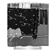 Laundry Vii Black And White Venice Italy Shower Curtain