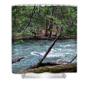 Laurel Hill Creek Hemlock Overlook Shower Curtain